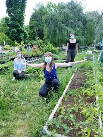 Les Petits Renards started gardening