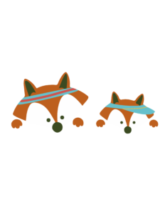 dpr-tetes-renards